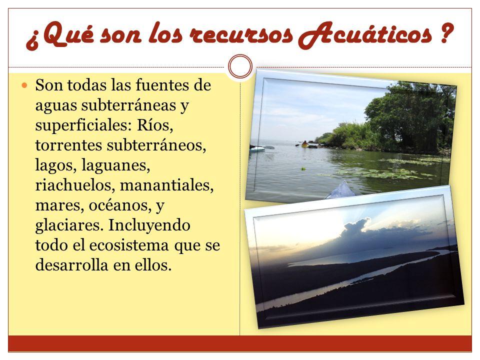 ¿Qué son los recursos Acuáticos ? Son todas las fuentes de aguas subterráneas y superficiales: Ríos, torrentes subterráneos, lagos, laguanes, riachuel