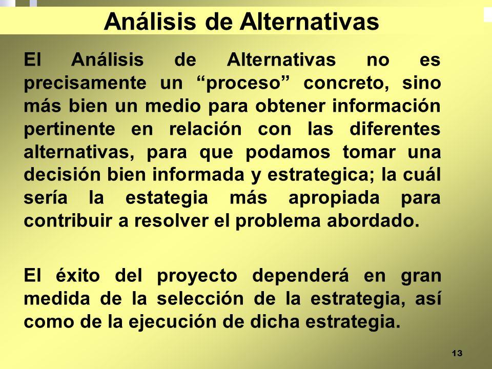 13 El Análisis de Alternativas no es precisamente un proceso concreto, sino más bien un medio para obtener información pertinente en relación con las