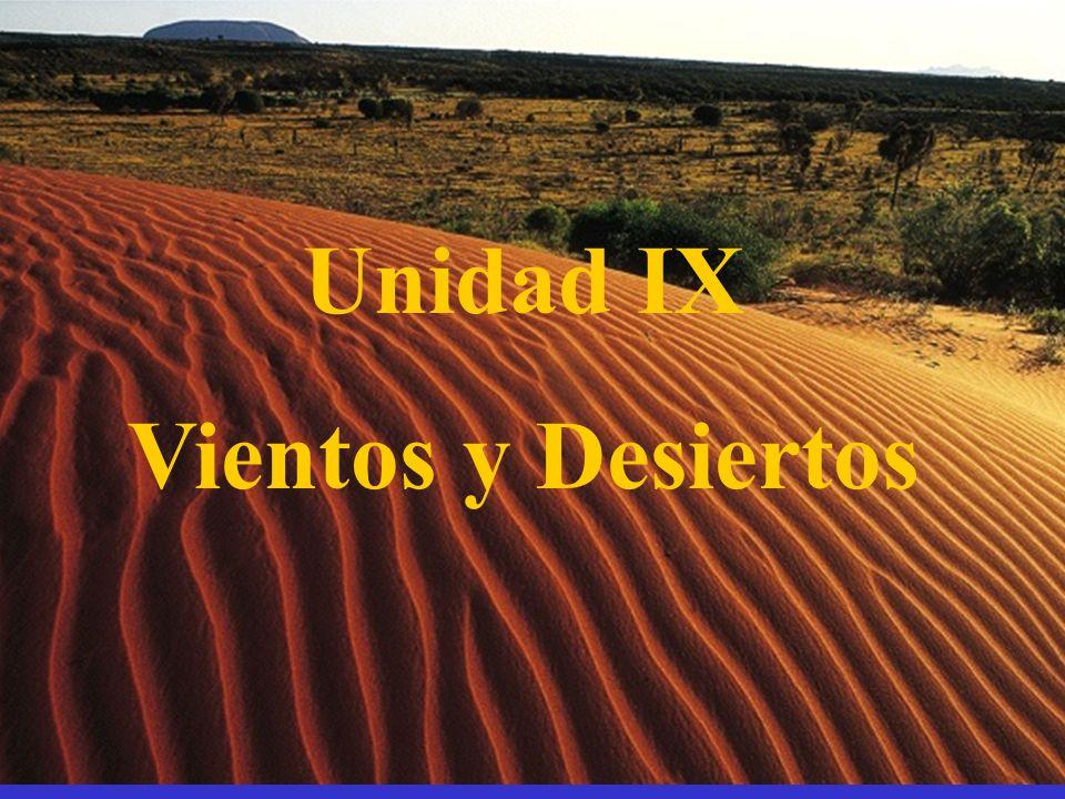 Corrientes y lagos en los desiertos Algunas corrientes en el desierto se secan pendiente arriba antes de desembocar en los mares.