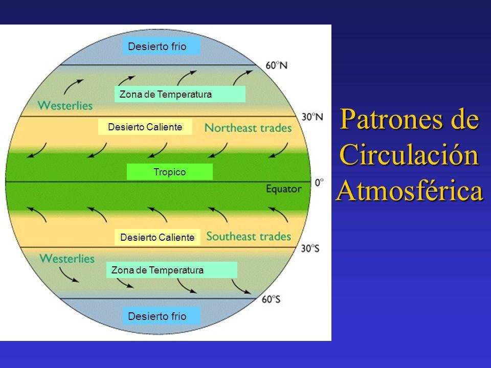 Erosión y desiertos El Viento es el agente más importante de la erosión en los desiertos.
