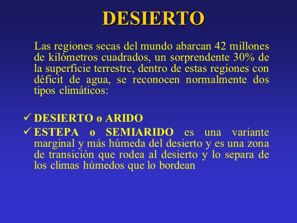 El Ambiente Desértico Dónde están los desiertos.