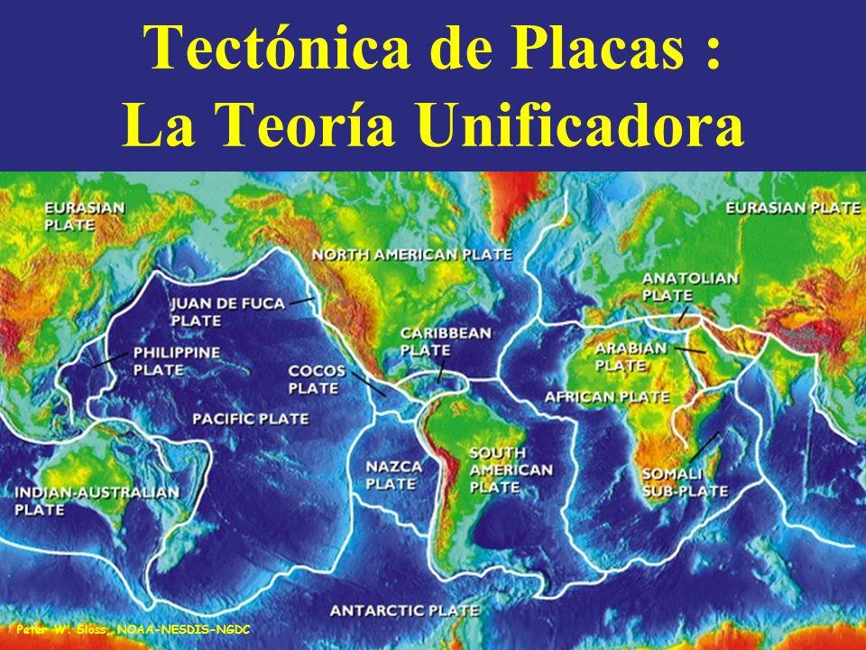 TECTONICA DE PLACAS Los conceptos - DERIVA CONTINENTAL - EXPANSION DEL FONDO Se unieron como un todo en una teoría mucho más completa denominada TECTÓNICA DE PLACAS