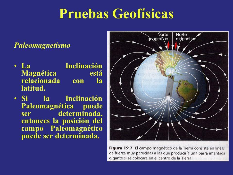Paleomagnetismo La Inclinación Magnética está relacionada con la latitud. Si la Inclinación Paleomagnética puede ser determinada, entonces la posición