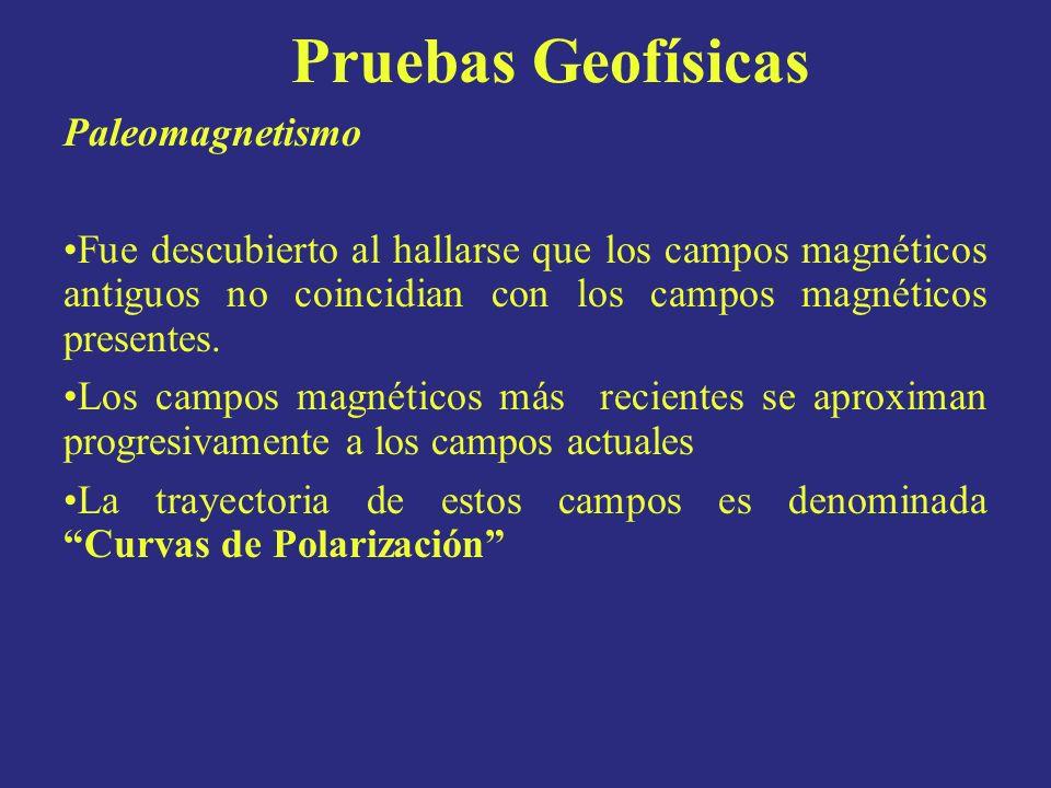 Paleomagnetismo Fue descubierto al hallarse que los campos magnéticos antiguos no coincidian con los campos magnéticos presentes. Los campos magnético
