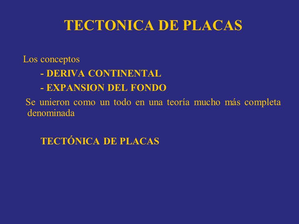TECTONICA DE PLACAS Los conceptos - DERIVA CONTINENTAL - EXPANSION DEL FONDO Se unieron como un todo en una teoría mucho más completa denominada TECTÓ