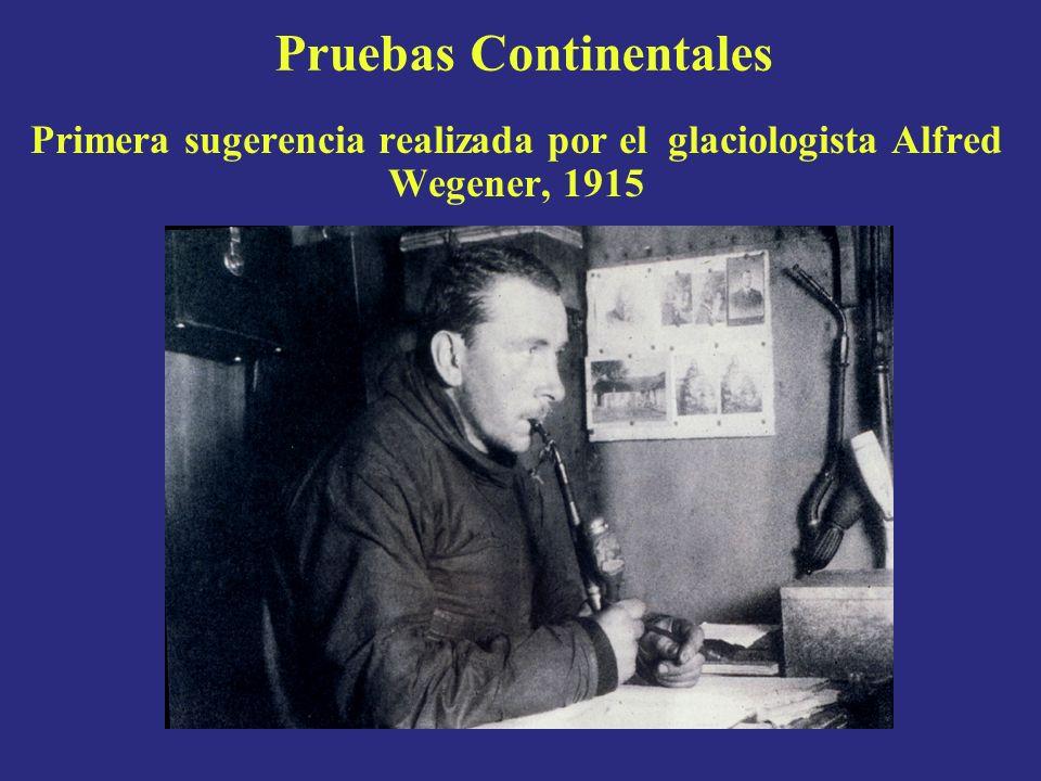 Paleomagnetismo Fue descubierto al hallarse que los campos magnéticos antiguos no coincidian con los campos magnéticos presentes.