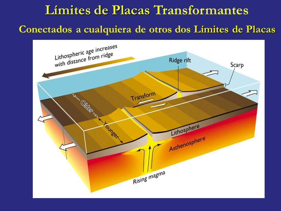 Límites de Placas Límites de Placas Transformantes Límites de Placas Conectados a cualquiera de otros dos Límites de Placas
