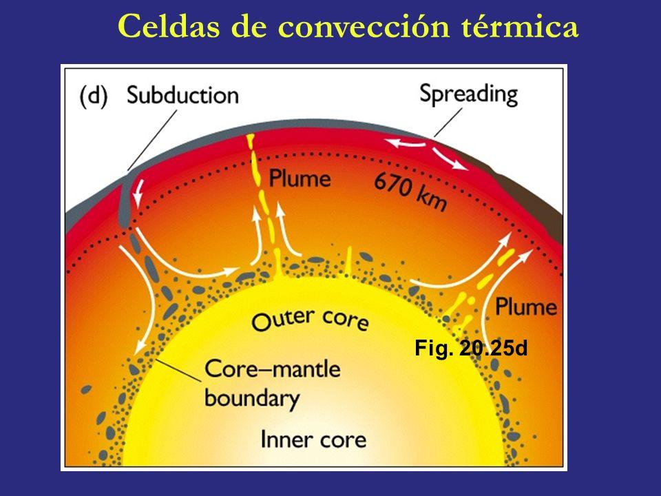 Fig. 20.25d Celdas de convección térmica