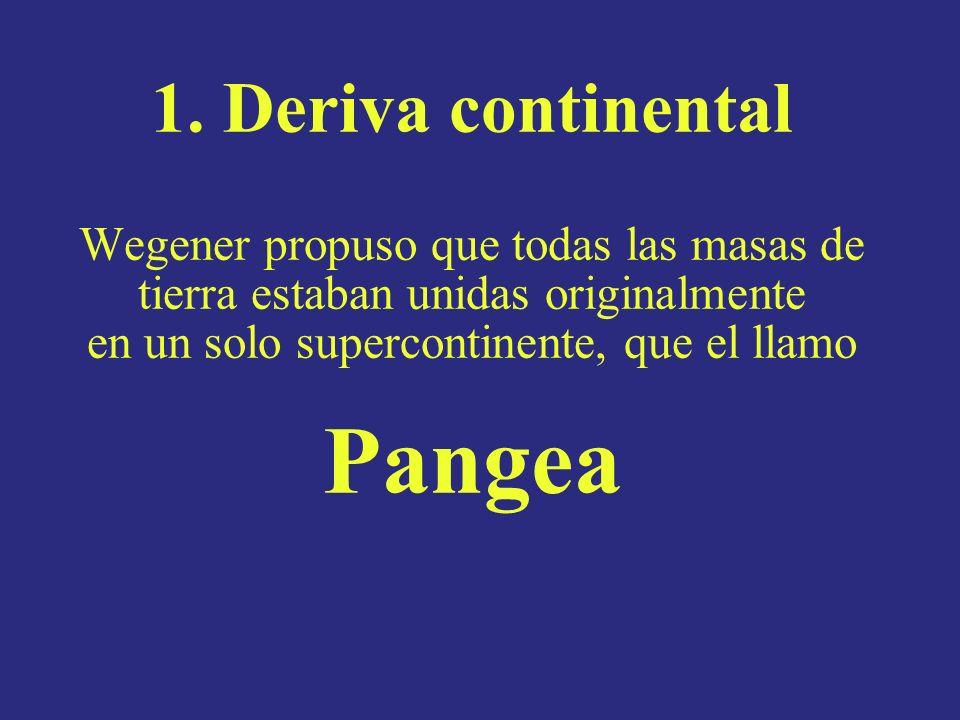1. Deriva continental Wegener propuso que todas las masas de tierra estaban unidas originalmente en un solo supercontinente, que el llamo Pangea