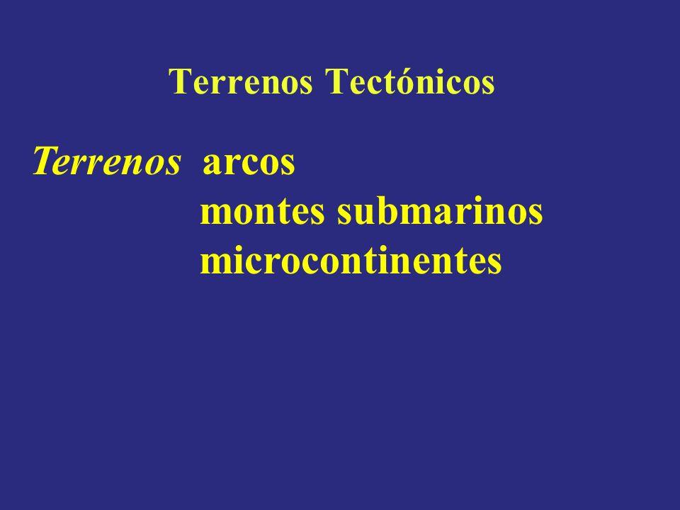 Terrenos Tectónicos Terrenos arcos montes submarinos microcontinentes