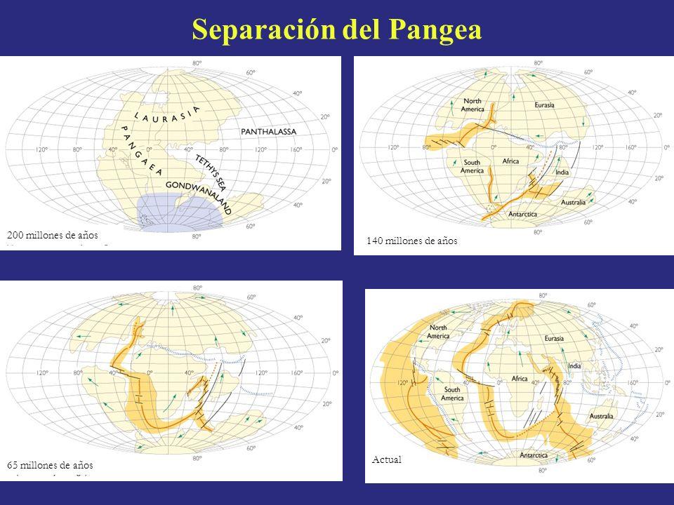PANGEA Expresión griega que significa toda la tierra, para esto se fundamento en toda una serie de PRUEBAS GEOLÓGICAS que son: - Ajuste continental - Semejanza de secuencias de rocas y cadenas montañosas - Evidencia glacial - Evidencia fósil