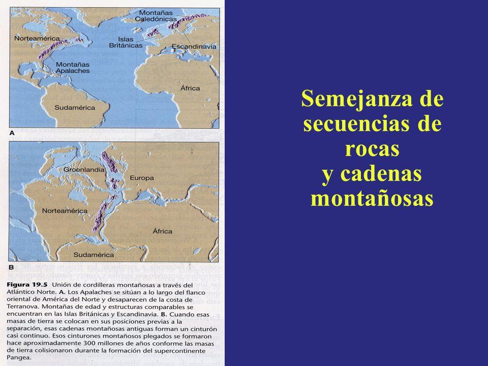 Límites de Placas Convergentes La Corteza se va destruyendo (reciclando) hacia la zona de subducción (Ej: La Tierra no se está expandiendo) Dos tipos: Oceáno – OceánoJapón, Filipinas Oceáno – ContinenteAndes