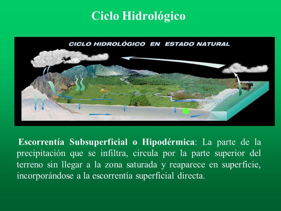 Escorrentía Superficial Directa: Es la parte del agua de lluvia que circula por la superficie del terreno, y confluye a los ríos, arroyos y otras masa