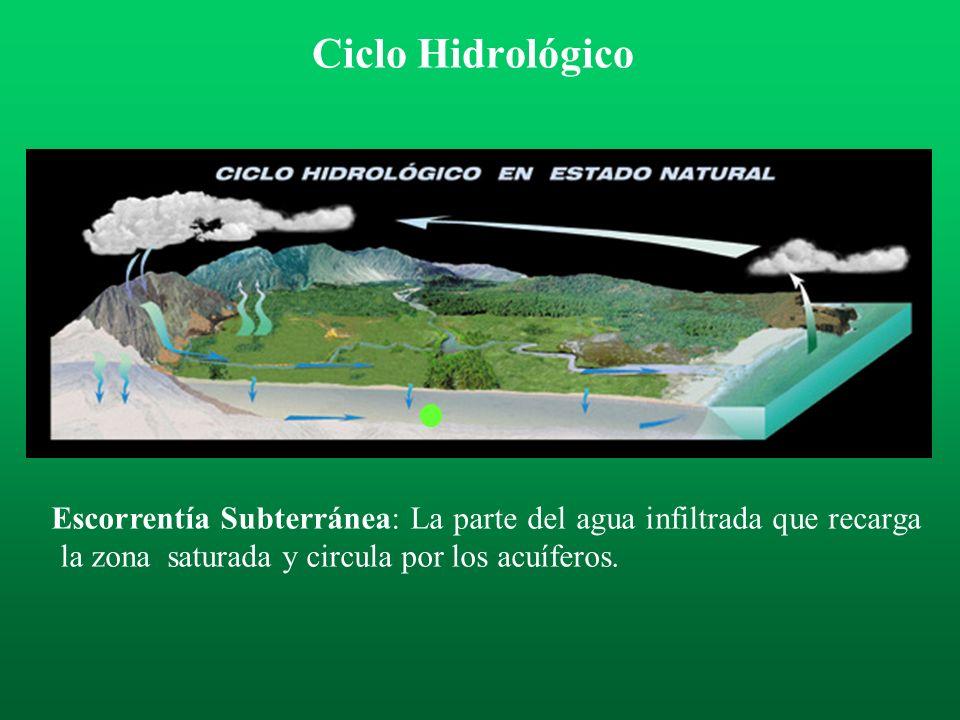 Escorrentía Subsuperficial o Hipodérmica: La parte de la precipitación que se infiltra, circula por la parte superior del terreno sin llegar a la zona