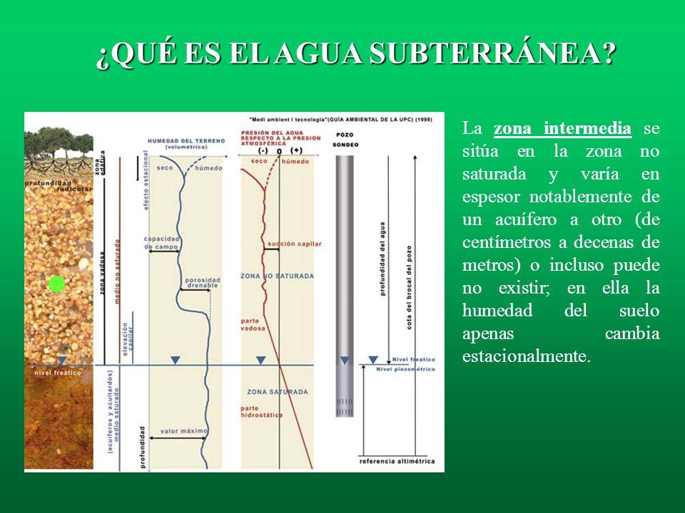 La zona edáfica, se sitúa en la zona no saturada y abarca desde la superficie del terreno hasta la profundidad alcanzada por las raíces. Está atravesa