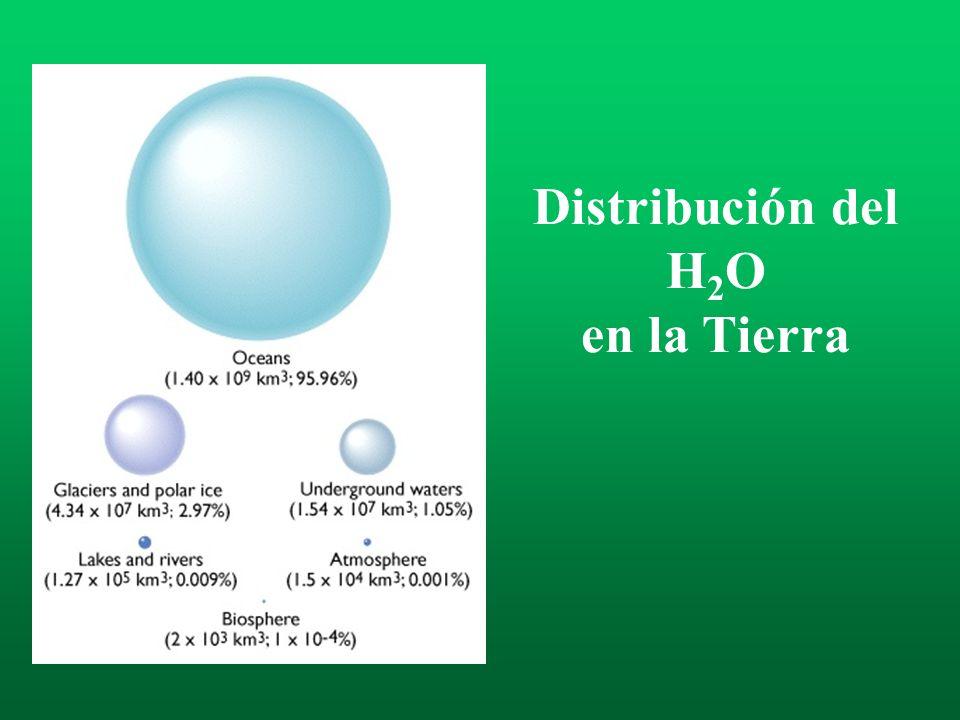 Distribución del H 2 O en la Tierra