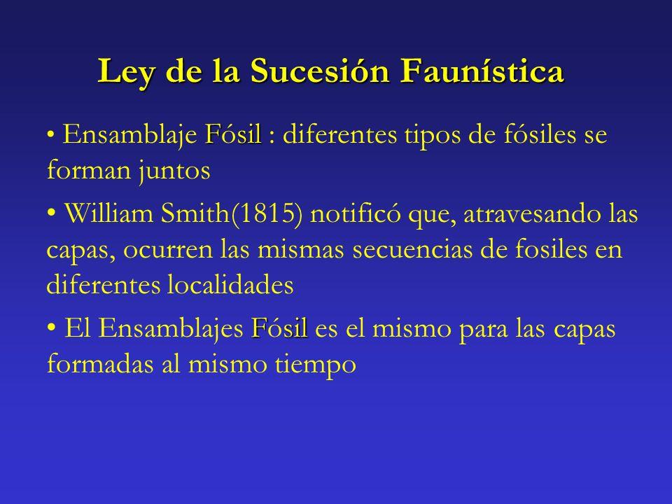 Ley de la Sucesión Faunística Fsil Ensamblaje Fósil : diferentes tipos de fósiles se forman juntos William Smith(1815) notificó que, atravesando las c