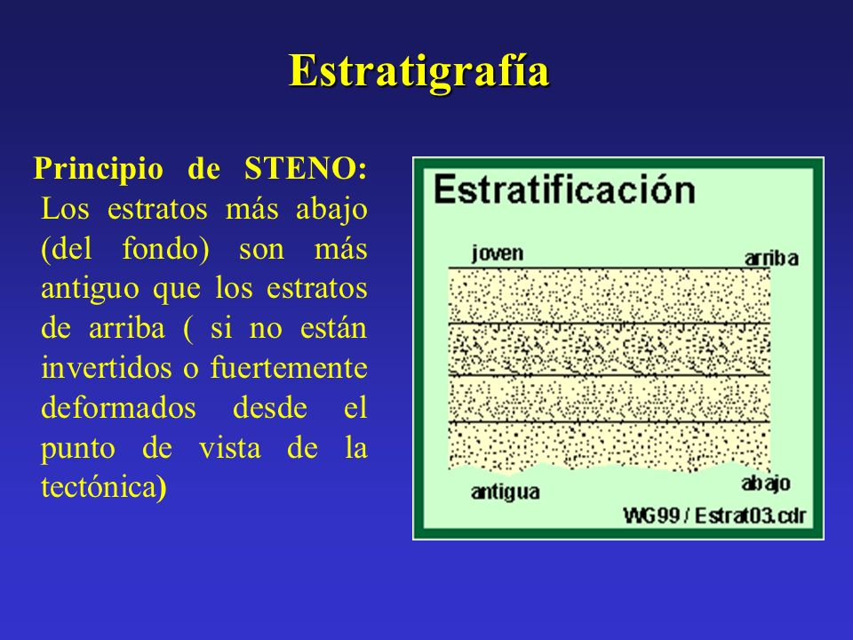 Estratigrafía Principio de STENO: Los estratos más abajo (del fondo) son más antiguo que los estratos de arriba ( si no están invertidos o fuertemente