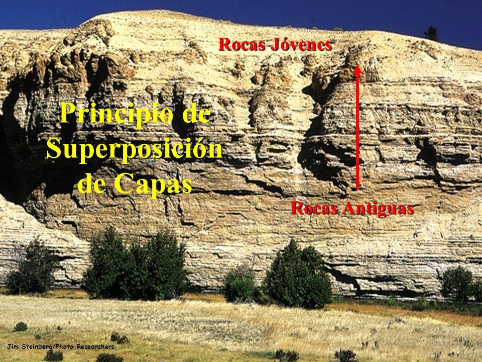 Jim Steinberg/Photo Researchers Rocas Jóvenes Superposición Principio de Superposición de Capas Rocas Antiguas