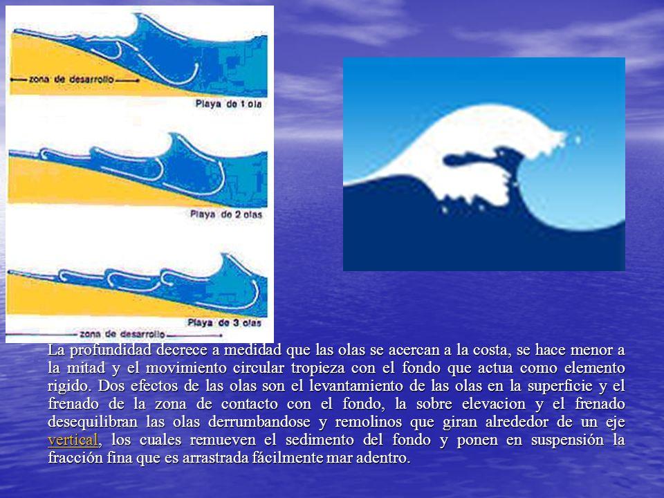 La profundidad decrece a medidad que las olas se acercan a la costa, se hace menor a la mitad y el movimiento circular tropieza con el fondo que actua como elemento rigido.