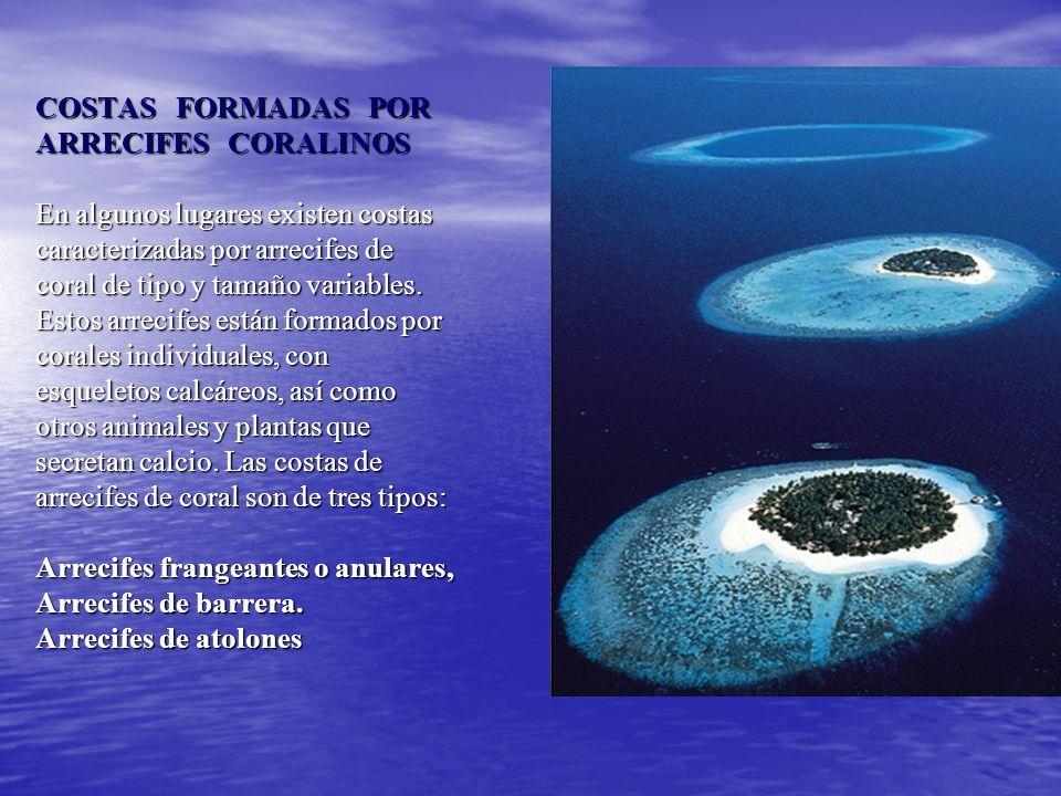 COSTAS FORMADAS POR ARRECIFES CORALINOS En algunos lugares existen costas caracterizadas por arrecifes de coral de tipo y tamaño variables.