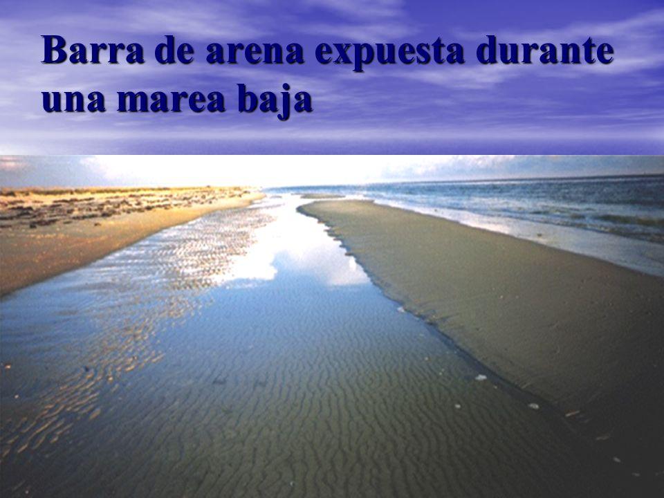 Barra de arena expuesta durante una marea baja