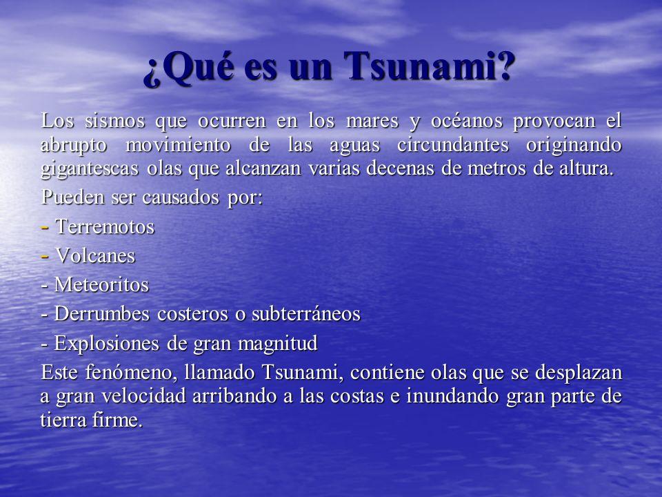 ¿Qué es un Tsunami.