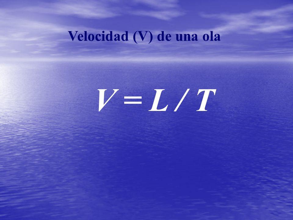 Velocidad (V) de una ola V = L / T