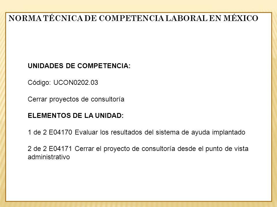 UNIDADES DE COMPETENCIA: Código: UCON0202.03 Cerrar proyectos de consultoría ELEMENTOS DE LA UNIDAD: 1 de 2 E04170 Evaluar los resultados del sistema
