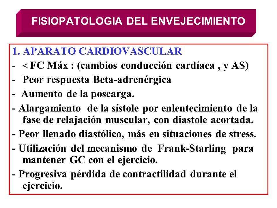 FISIOPATOLOGIA DEL ENVEJECIMIENTO 1. APARATO CARDIOVASCULAR -< FC Máx : (cambios conducción cardíaca, y AS) -Peor respuesta Beta-adrenérgica - Aumento