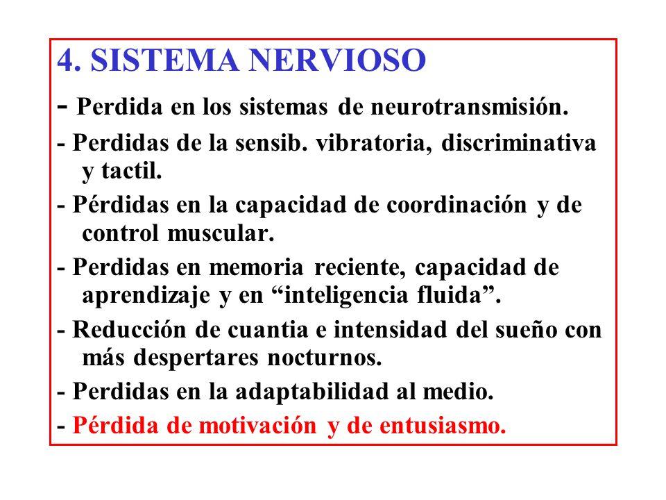 4. SISTEMA NERVIOSO - Perdida en los sistemas de neurotransmisión. - Perdidas de la sensib. vibratoria, discriminativa y tactil. - Pérdidas en la capa