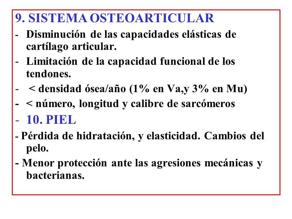 9. SISTEMA OSTEOARTICULAR - Disminución de las capacidades elásticas de cartílago articular. -Limitación de la capacidad funcional de los tendones. -