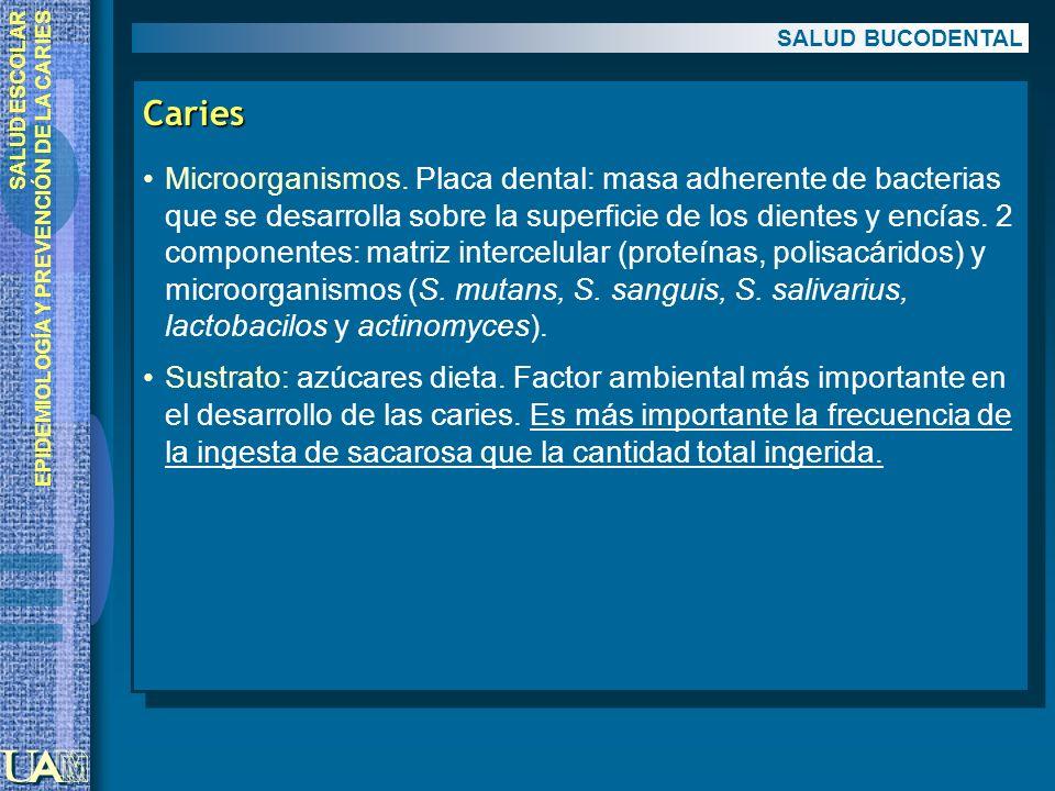 SALUD ESCOLAR EPIDEMIOLOGÍA Y PREVENCIÓN DE LA CARIES Caries Microorganismos. Placa dental: masa adherente de bacterias que se desarrolla sobre la sup