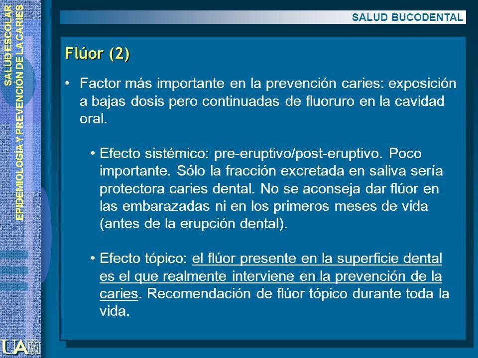SALUD ESCOLAR EPIDEMIOLOGÍA Y PREVENCIÓN DE LA CARIES Flúor (2) Factor más importante en la prevención caries: exposición a bajas dosis pero continuad