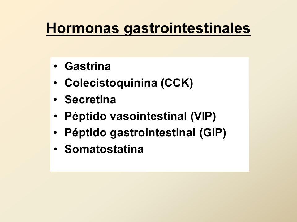 Hormonas gastrointestinales Gastrina Colecistoquinina (CCK) Secretina Péptido vasointestinal (VIP) Péptido gastrointestinal (GIP) Somatostatina