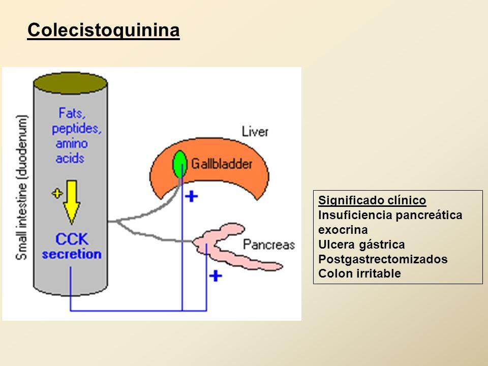 Resultado de imagen de hormona colecistoquinina