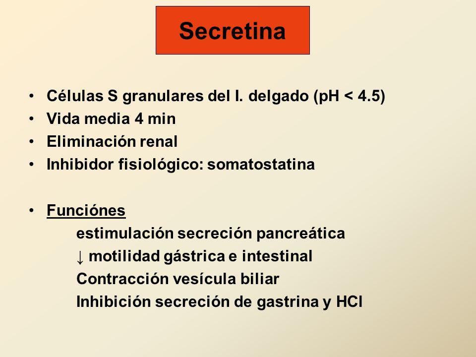 Secretina Células S granulares del I. delgado (pH < 4.5) Vida media 4 min Eliminación renal Inhibidor fisiológico: somatostatina Funciónes estimulació