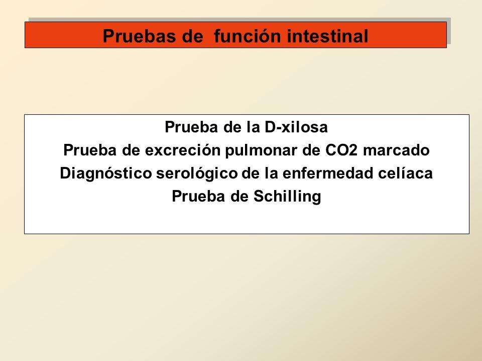 Pruebas de función intestinal Prueba de la D-xilosa Prueba de excreción pulmonar de CO2 marcado Diagnóstico serológico de la enfermedad celíaca Prueba