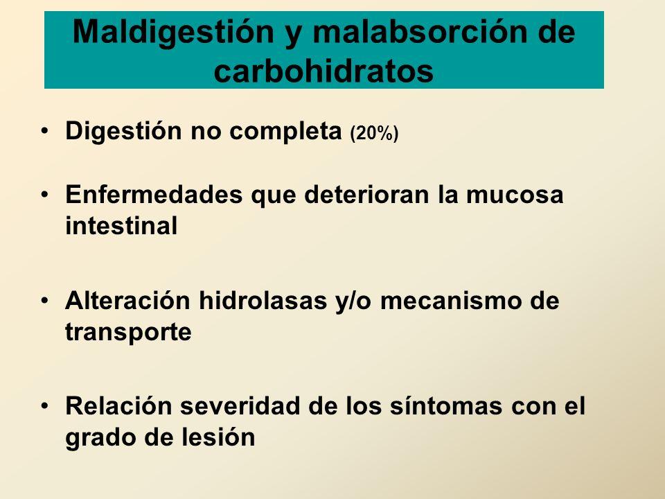 Maldigestión y malabsorción de carbohidratos Digestión no completa (20%) Enfermedades que deterioran la mucosa intestinal Alteración hidrolasas y/o me