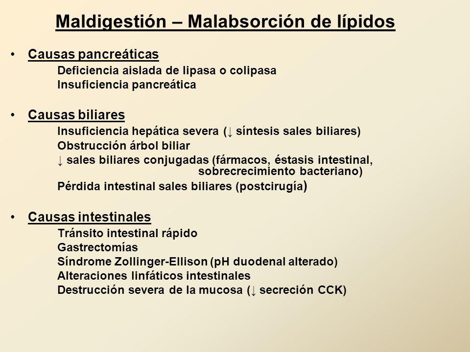 Maldigestión – Malabsorción de lípidos Causas pancreáticas Deficiencia aislada de lipasa o colipasa Insuficiencia pancreática Causas biliares Insufici