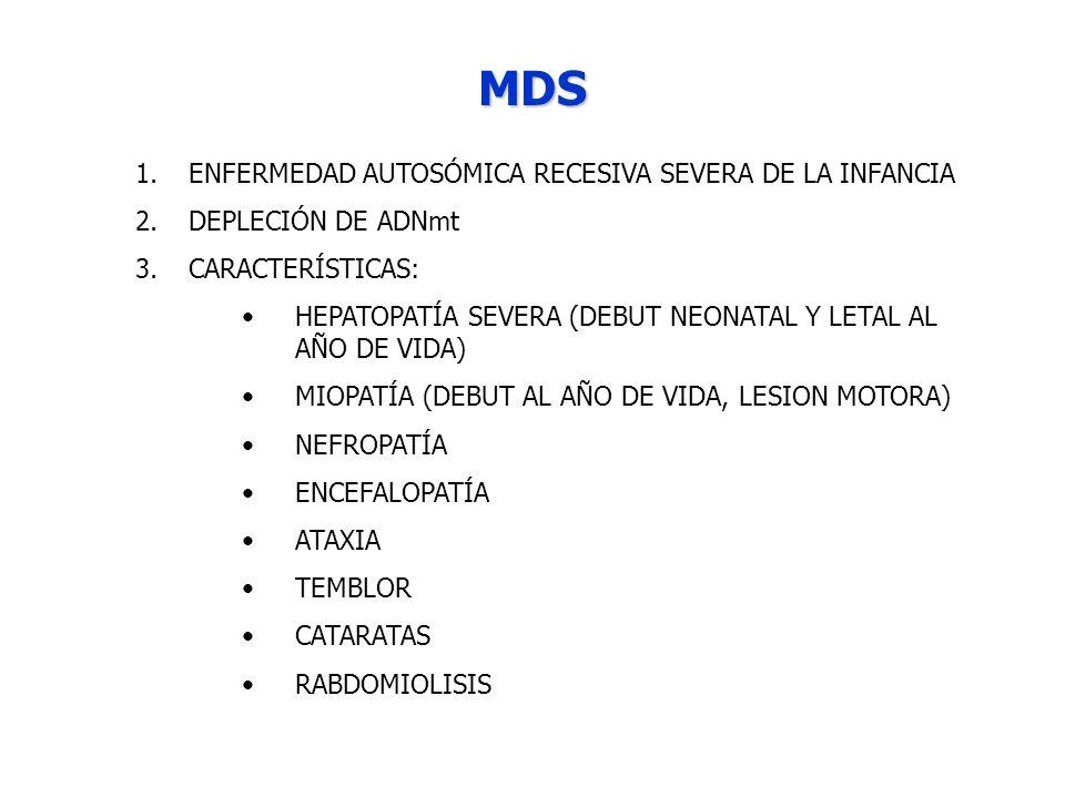 MDS 1.ENFERMEDAD AUTOSÓMICA RECESIVA SEVERA DE LA INFANCIA 2.DEPLECIÓN DE ADNmt 3.CARACTERÍSTICAS: HEPATOPATÍA SEVERA (DEBUT NEONATAL Y LETAL AL AÑO D