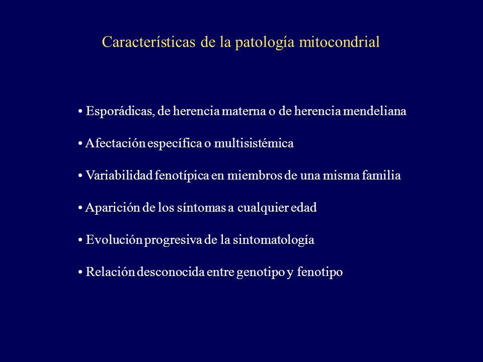 Características de la patología mitocondrial Esporádicas, de herencia materna o de herencia mendeliana Afectación específica o multisistémica Variabil