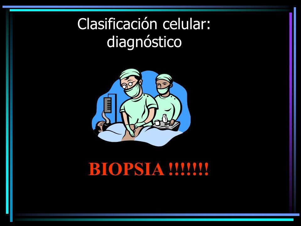 Clasificación celular: diagnóstico SOLO PAAF