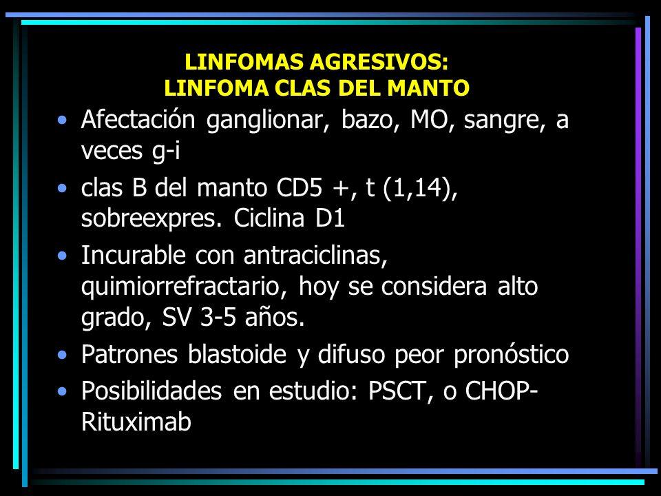 LINFOMAS AGRESIVOS: LINFOMA CLAS T PERIFÉRICO Patrón clas T grandes difuso o mixto, post- tímico CD4 o CD8 +, heterogéneo. Aparente peor pronóstico qu