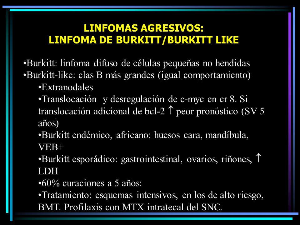 LINFOMAS AGRESIVOS: LINFOMAS LINFOBLÁSTICOS Altamente agresivos: MO, SNC Pacientes jóvenes Tto similar a las leucemias linfoblásticas agudas