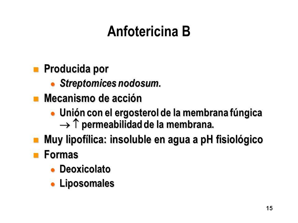 15 Anfotericina B n Producida por l Streptomices nodosum. n Mecanismo de acción l Unión con el ergosterol de la membrana fúngica permeabilidad de la m