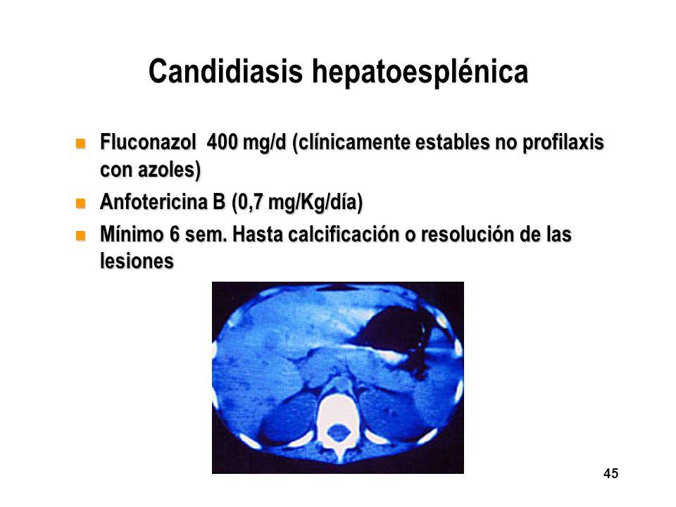 45 Candidiasis hepatoesplénica n Fluconazol 400 mg/d (clínicamente estables no profilaxis con azoles) n Anfotericina B (0,7 mg/Kg/día) n Mínimo 6 sem.