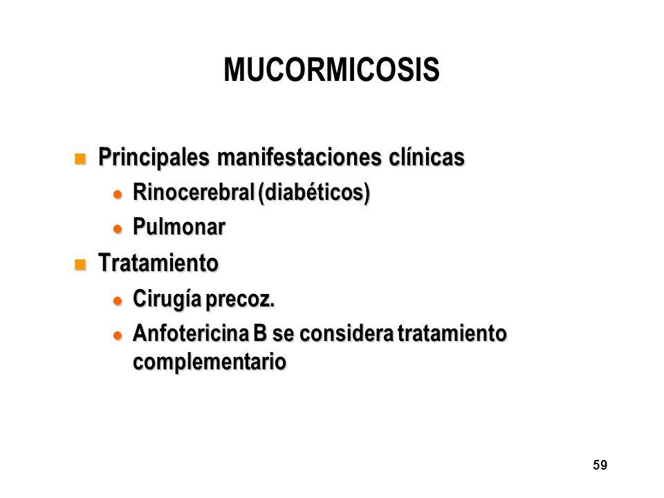 59 MUCORMICOSIS n Principales manifestaciones clínicas l Rinocerebral (diabéticos) l Pulmonar n Tratamiento l Cirugía precoz. l Anfotericina B se cons