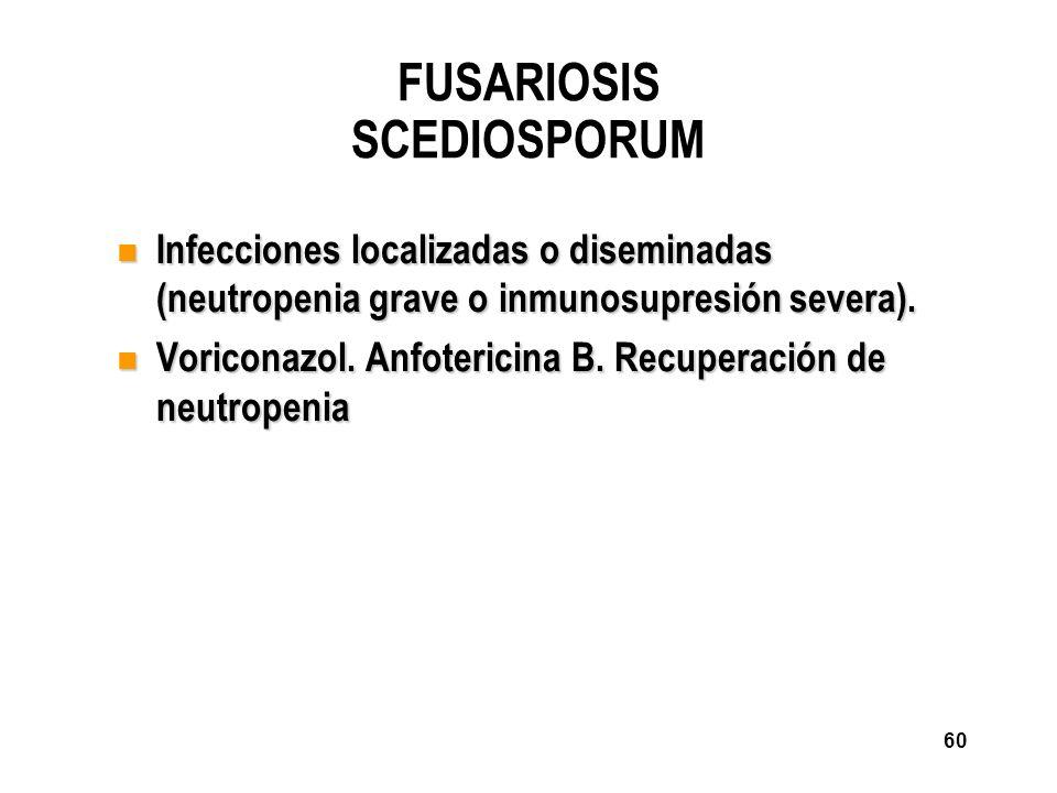 60 FUSARIOSIS SCEDIOSPORUM n Infecciones localizadas o diseminadas (neutropenia grave o inmunosupresión severa). n Voriconazol. Anfotericina B. Recupe