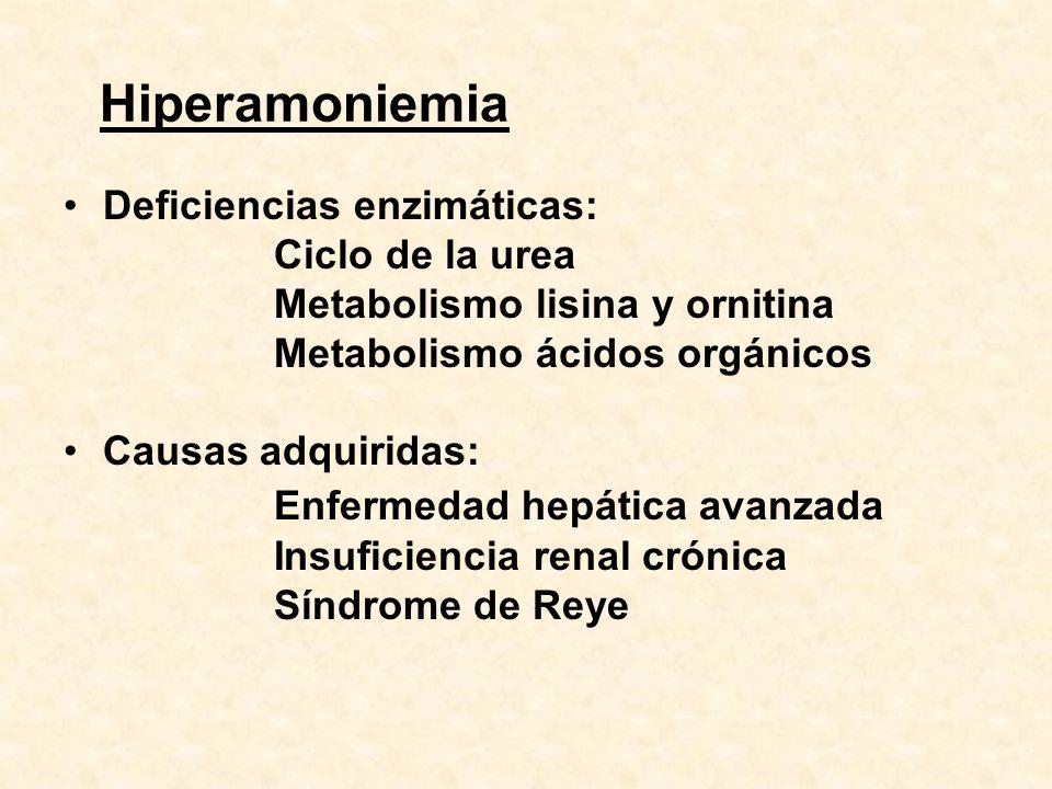 Hiperamoniemia Deficiencias enzimáticas: Ciclo de la urea Metabolismo lisina y ornitina Metabolismo ácidos orgánicos Causas adquiridas: Enfermedad hep